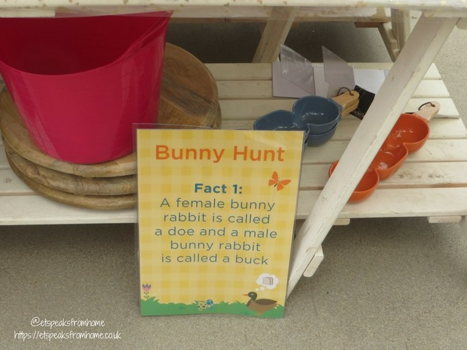 Tea with Easter Bunny at Wyevale Garden Centres bunny fact