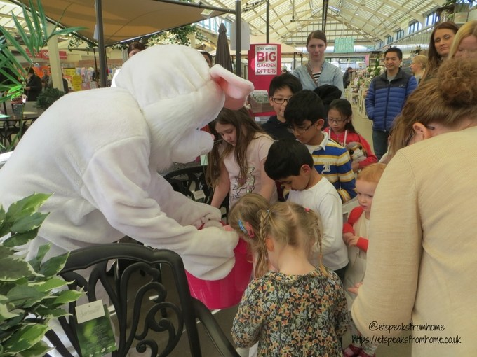 Tea with Easter Bunny at Wyevale Garden Centres bunny hunt