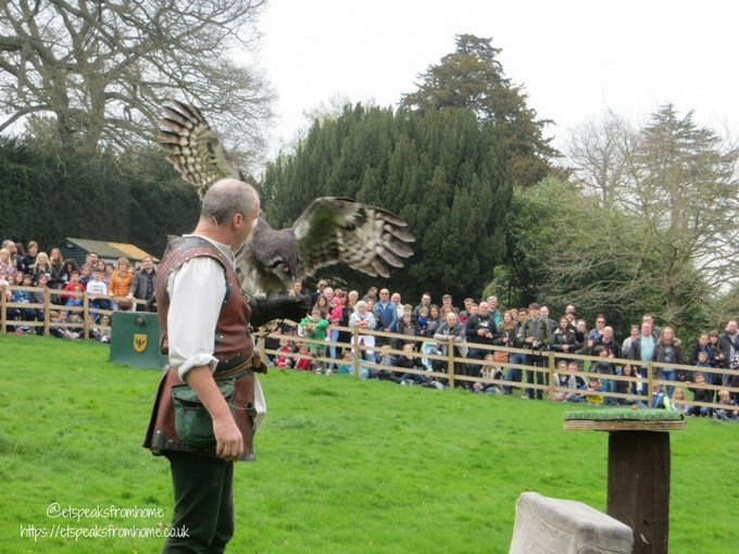 warwick castle 950 anniversary 2018 bird of prey