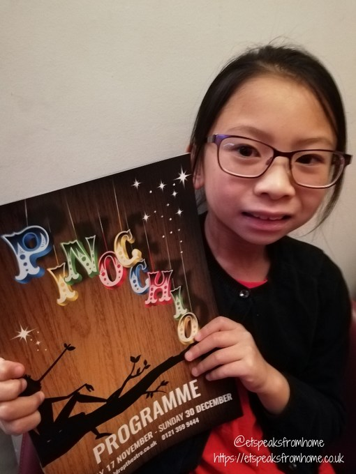 Pinocchio at The Old Rep programme