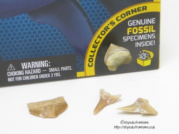 National Geographic STEM shark dig kit