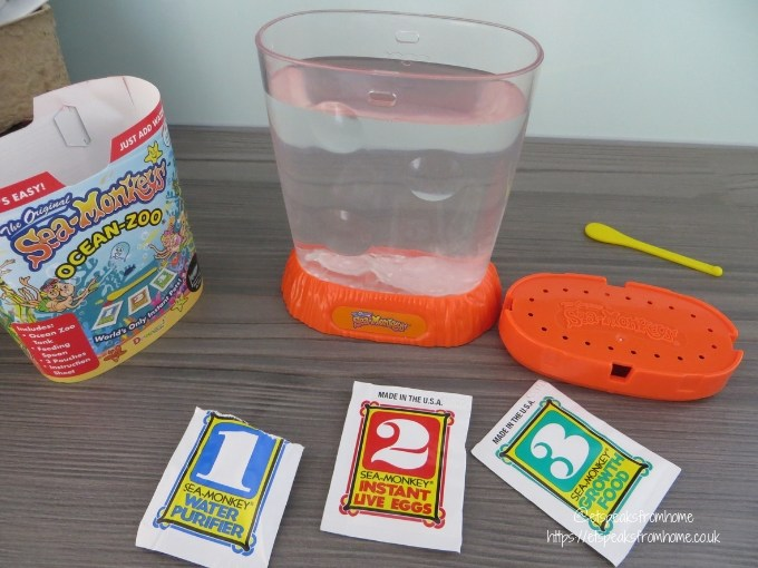 sea-monkeys kit