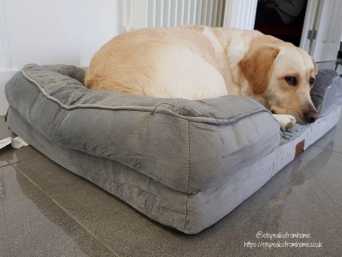 Bedsure Large Dog Sofa Bed dog