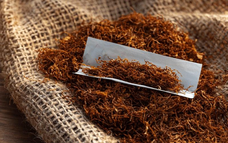 Kleines Blättchen, große Wirkung – Zigarettenpapier