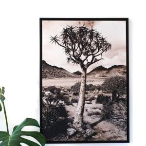 Tableau arbre désert Etxe Mia!