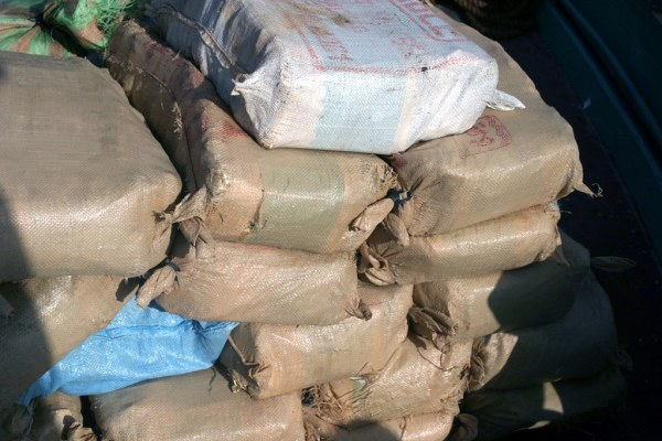 hashish smuggling racket
