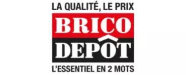 catalogue brico depot du 05 02 2021
