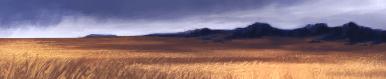Steppe terrain