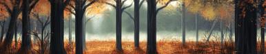 Woods terrain