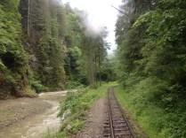 Valea_Vaserului9