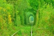 Tunelul ibirii din CS-4
