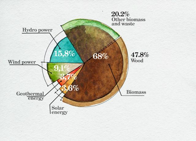 Figure 1. Consumption of renewable energy, EU-28, 2011 Source: AEBIOM, Eurostat 2013.
