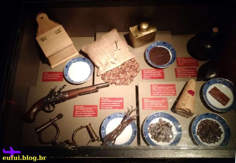 raleigh-north_carolina-museum_history-piratas