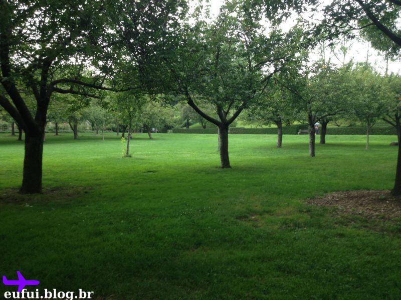 jardim botanico do brooklyn arvores