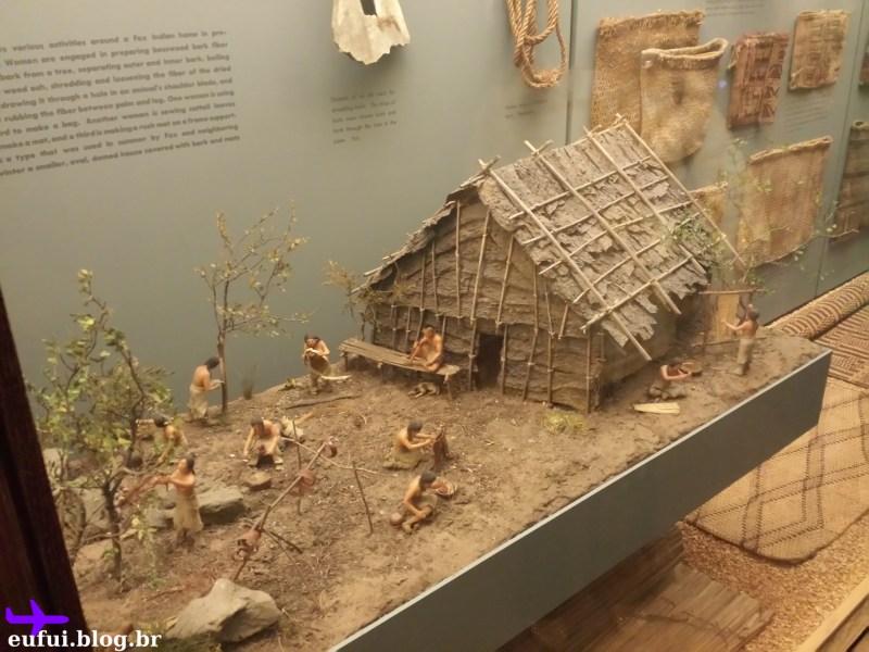 museu de historia natural humanos