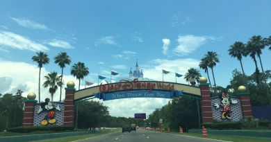 walt disney world entrada disney springs