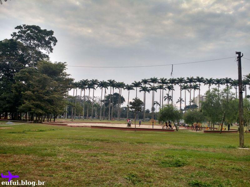 parque da cidade sao jose dos campos palmeiras