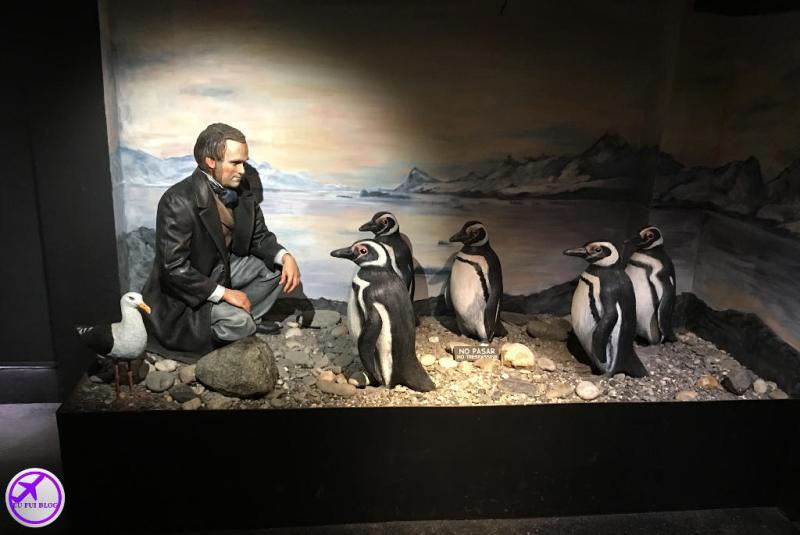 Navegação pelo Canal do Beagle - Ushuaia Terra do Fogo - Charles Darwin