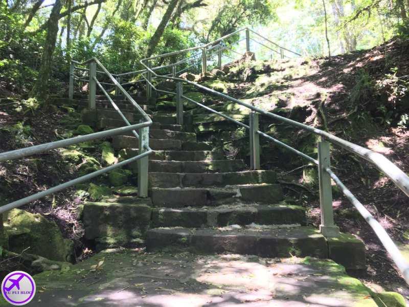 Escada de Acesso à Gruta do Monge no Parque Nacional do Monge - Lapa - Paraná