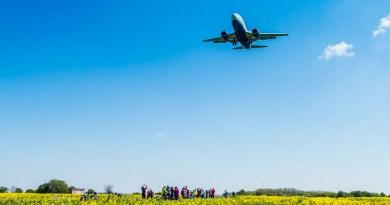 Avion deasupra unui lan de floarea soarelui