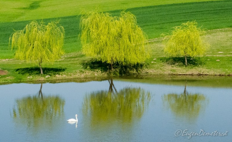 17620159 1479013465473180 5490749241773514546 o - Valea Iazurilor: relaxare cu imagini... orgasmice!