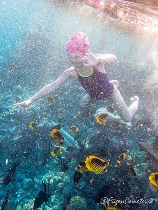 Fetita cu pesti sub apa in Marea Rosie