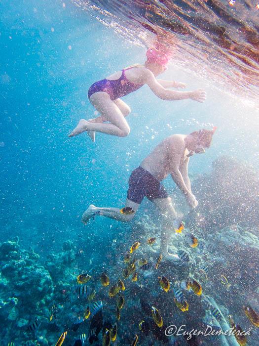 Fetita si barbat cu pesti sub apa in Marea Rosie