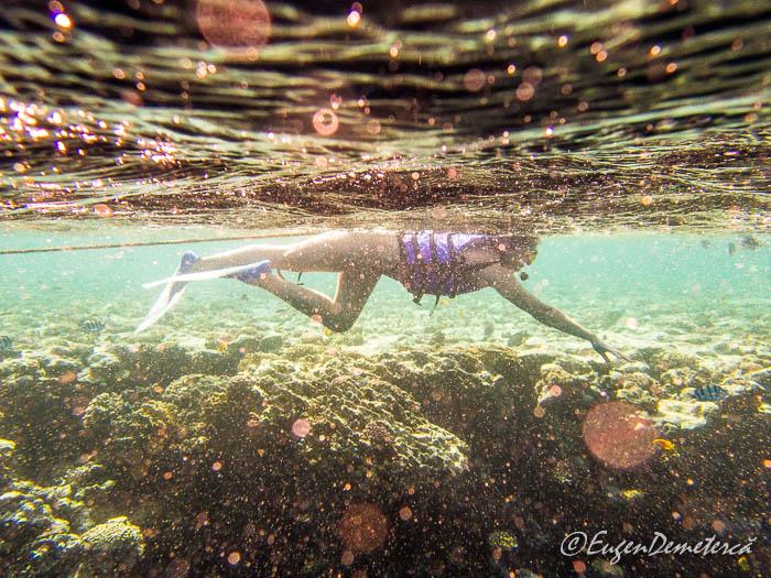 Snorkeling la Blue Hole - Dahab, Marea Rosie