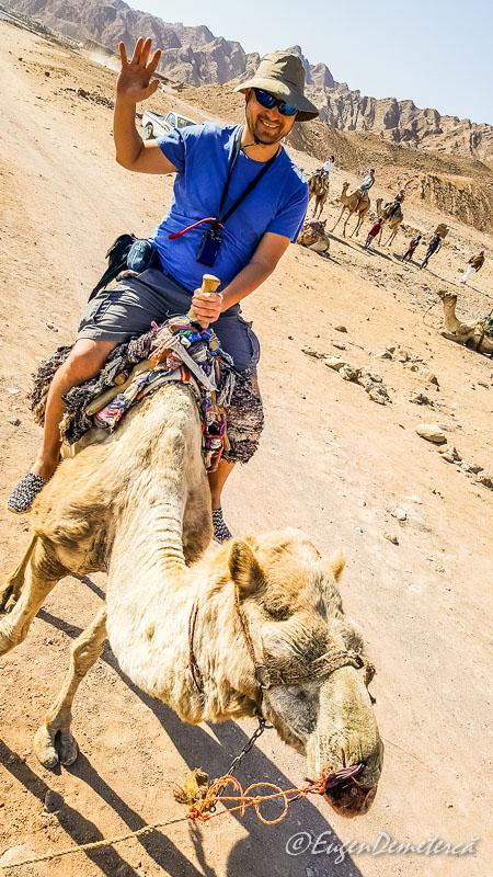Eu camila - Egipt, destinaţia pentru vacanţe exotice la super-preţuri!