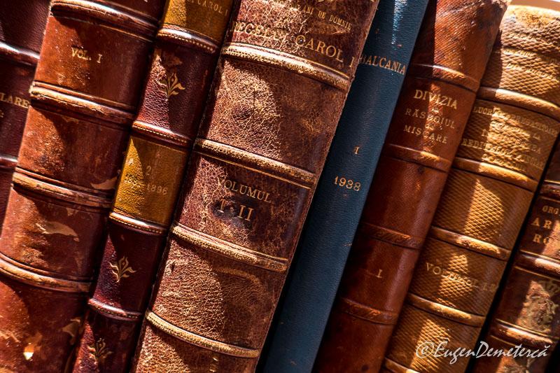Carti biblioteca regala - Paştele Regal la Săvârşin