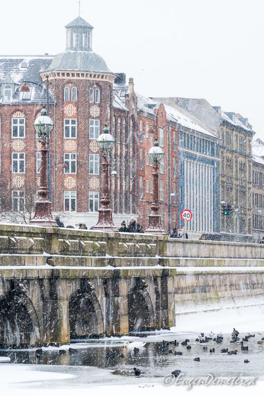 DSC9783 - Copenhaga, printre nămeți primăvărateci