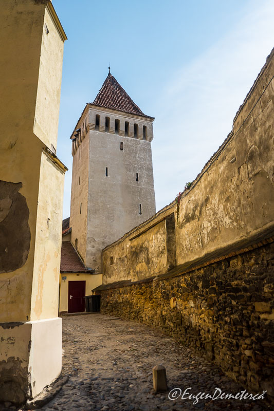 1160688 - Mediaş: perla ascunsă a colinelor Transilvaniei
