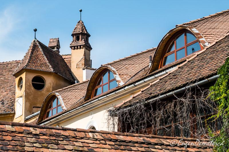 1160716 - Mediaş: perla ascunsă a colinelor Transilvaniei