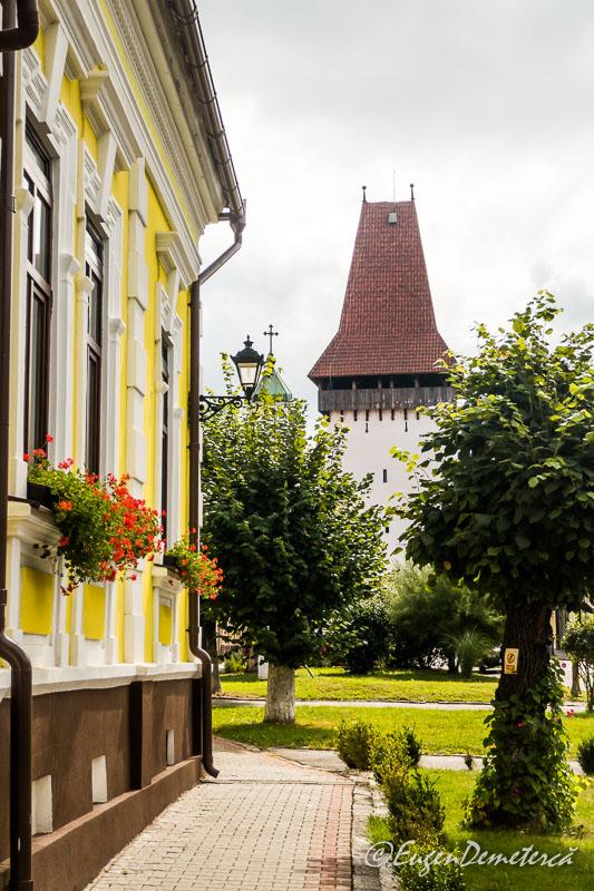 1160879 - Mediaş: perla ascunsă a colinelor Transilvaniei