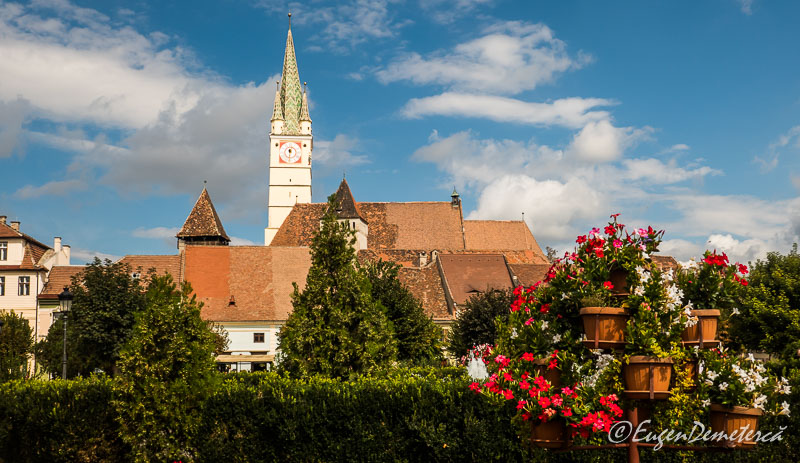 1160884 - Mediaş: perla ascunsă a colinelor Transilvaniei
