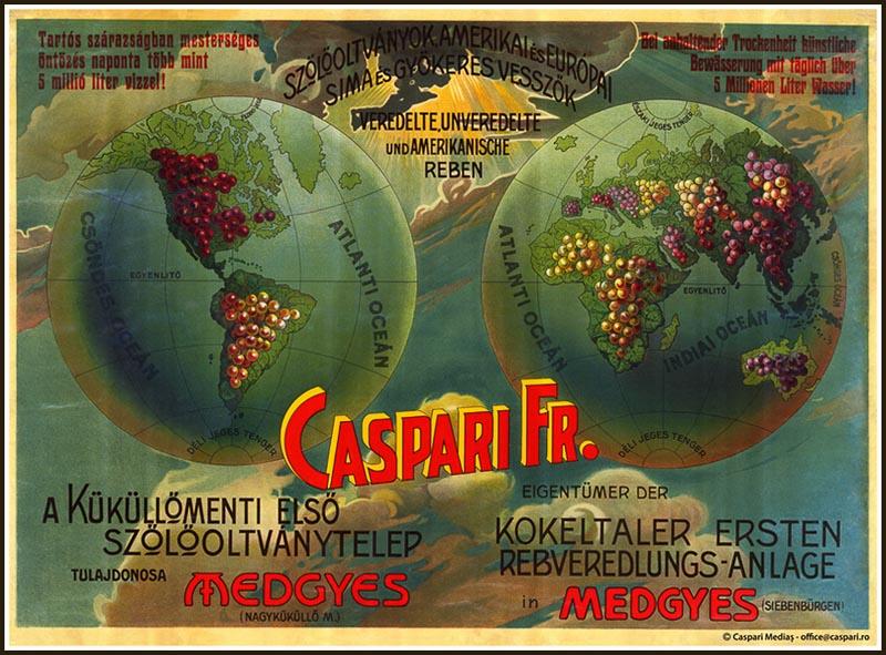 caspari poster - Mediaş: perla ascunsă a colinelor Transilvaniei