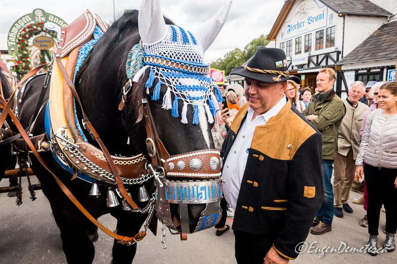 1170575 - Dezmățul de Oktoberfest
