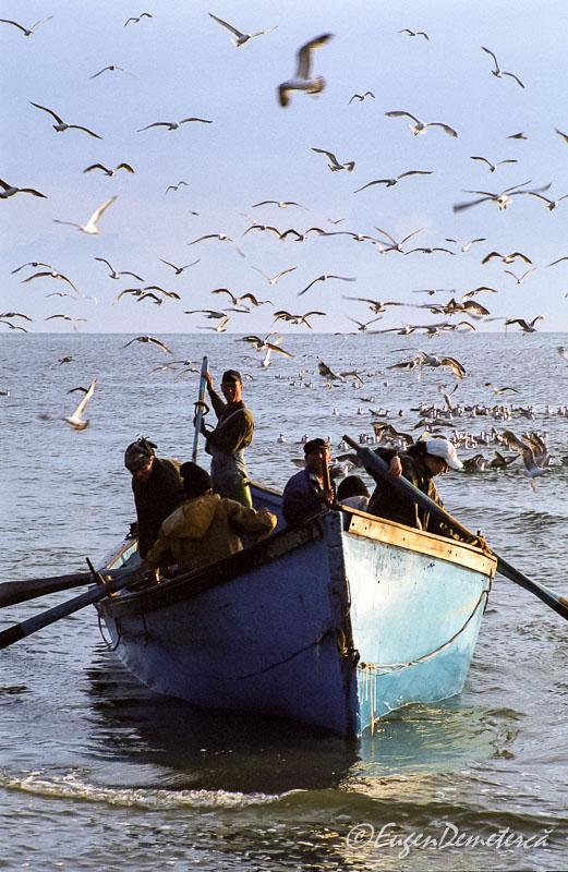 Pescari cu pescarusi in Delta