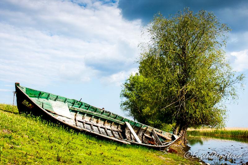 Barca la mal in Delta Dunarii