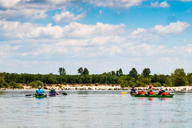 1260570 - Cu caiacul, de la Olt la Dunăre