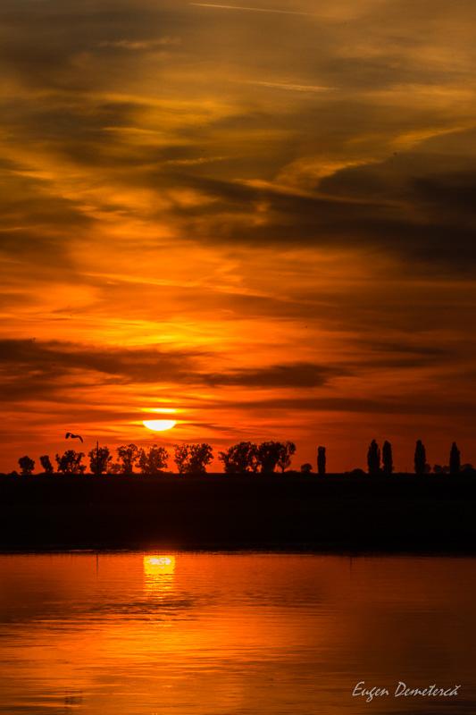 1260713 - Cu caiacul, de la Olt la Dunăre