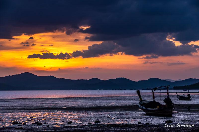 1010406 - Magia portocalie a Thailandei