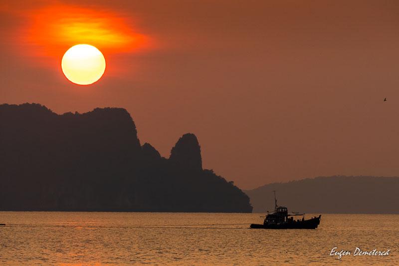 1010632 - Magia portocalie a Thailandei