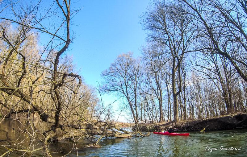 20200307102845 0027 - Caiacul cu primăvară în Delta Neajlovului