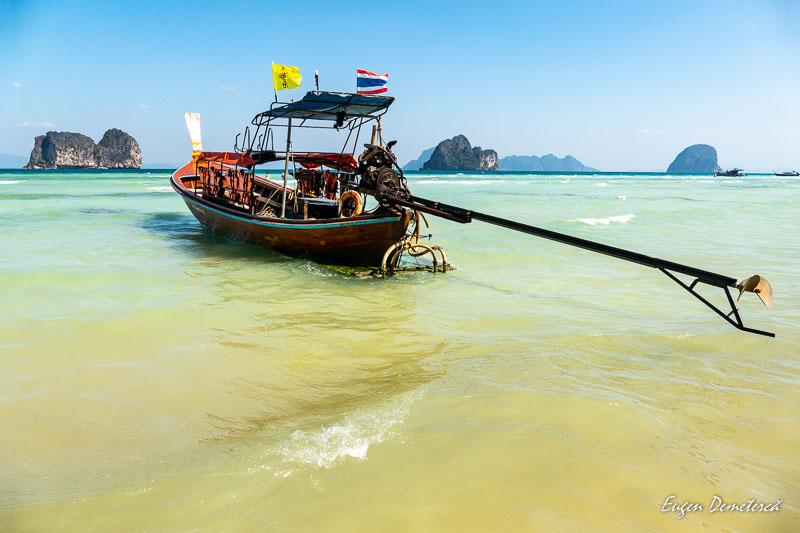 1000884 - Minunata Thailandă de sub ape