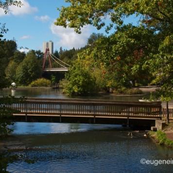 Eugene, Alton Baker Park (25)