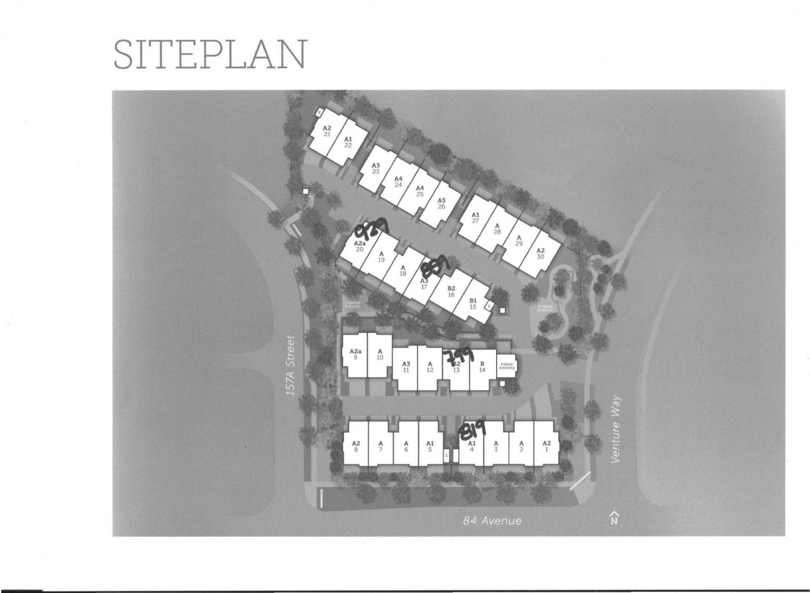 THOMAS Site Plan-1.jpg