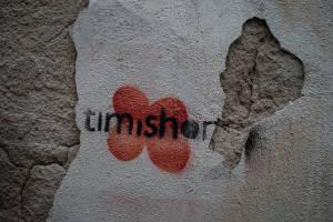 Timisoara-2