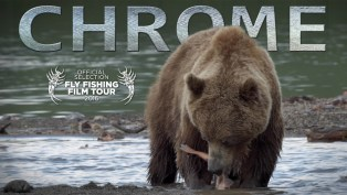 CHROME_-_Grizz_Thumb_poster