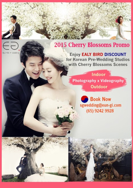 2015 Cherry Blossoms Promotion